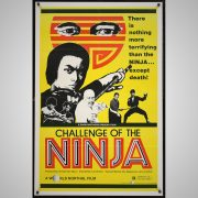 challenge-of-the-ninja-1000px