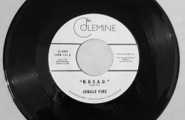 jungle-fire