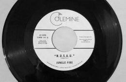 jungle-fire