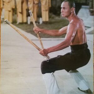 36th Chambers of Shaolin