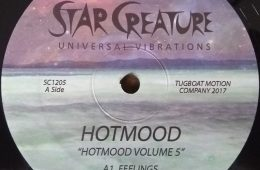 Hotmood vol. 5