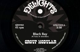 Group Modular Black Ray