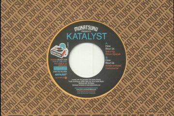 katalyst steve spacek
