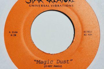 saucy lady magic dust