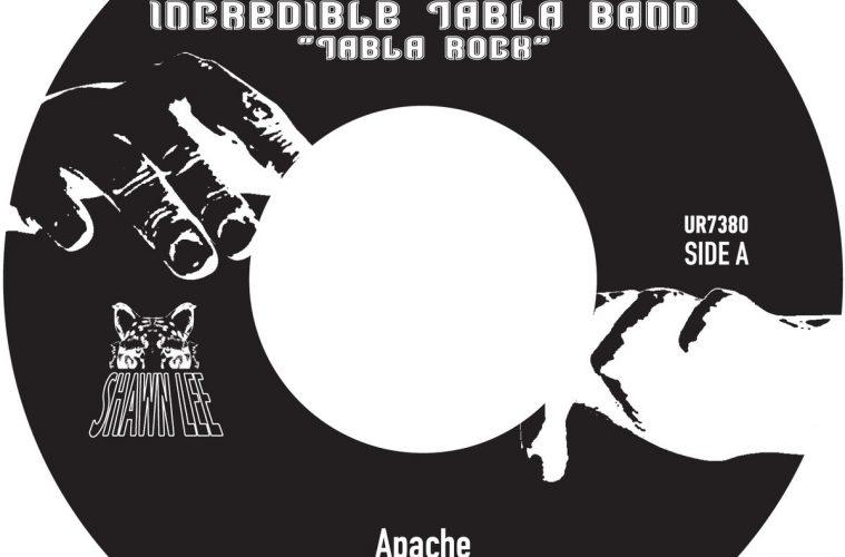 shawn lee apache