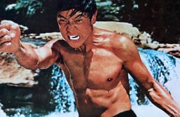 the screaming tiger wang yu