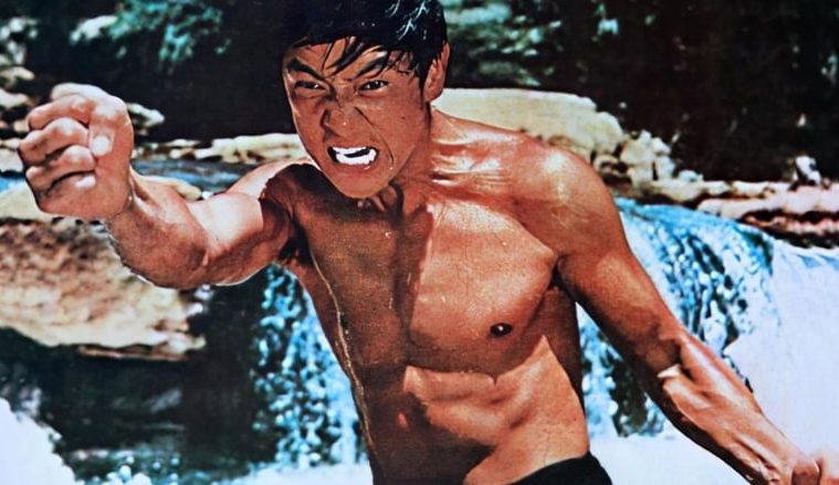the screaming tiger wang yu