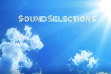 sound selections nerve